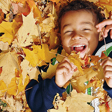 child playing in leaf pile