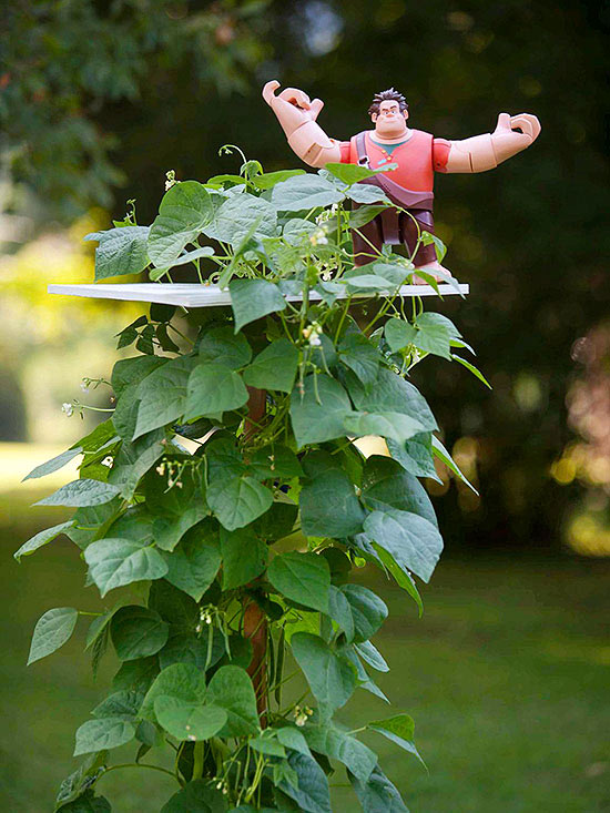 Fairy-Tale Garden beanstalk with giant on top
