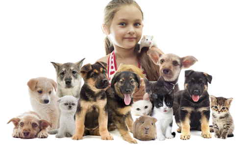 Little girl surrounded by pets