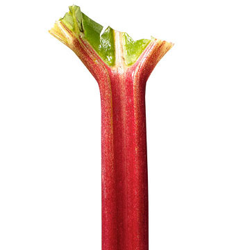 R is for Rhubarb