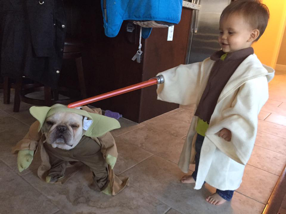 star wars kid 1