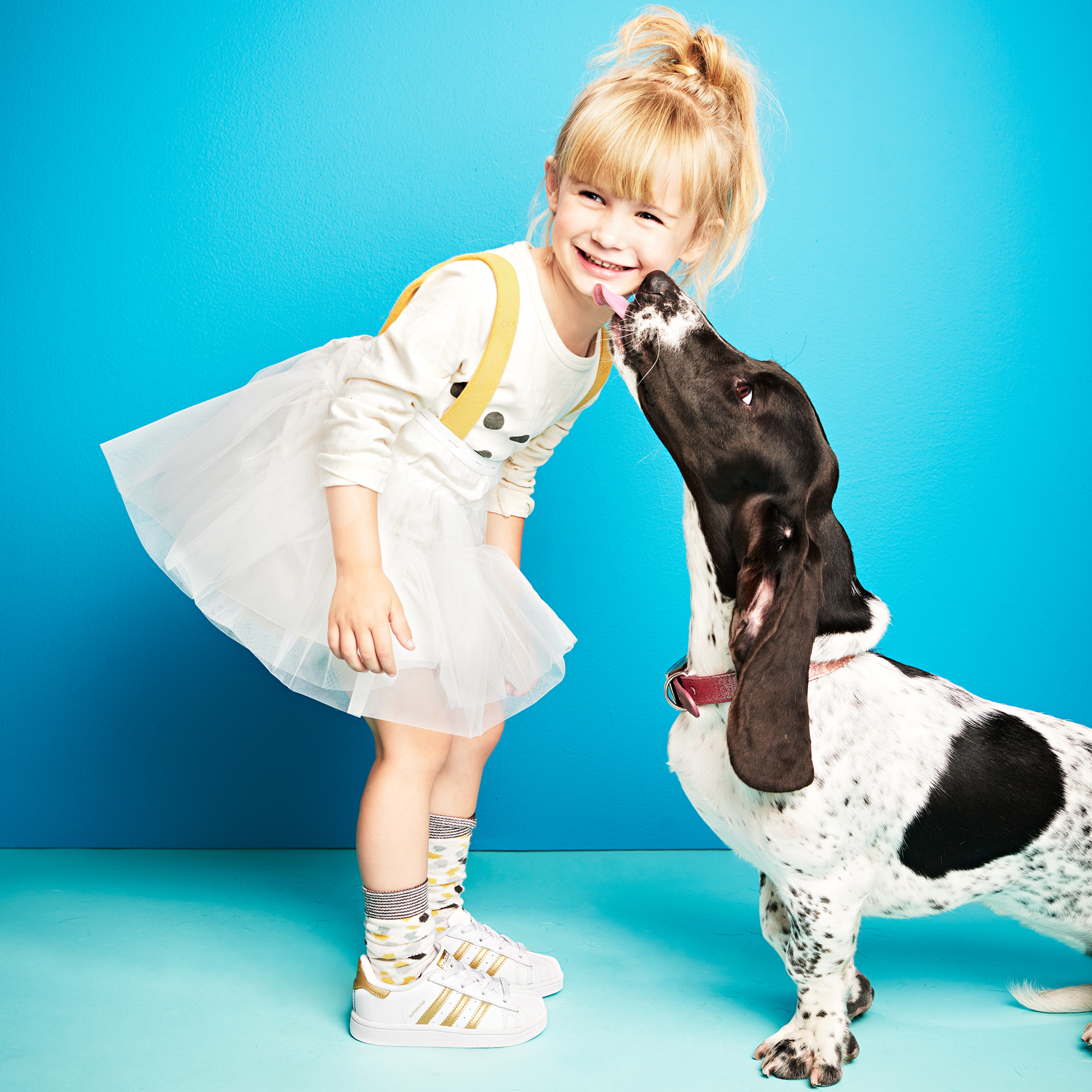 girl wearing tutu getting licked by her basset hound