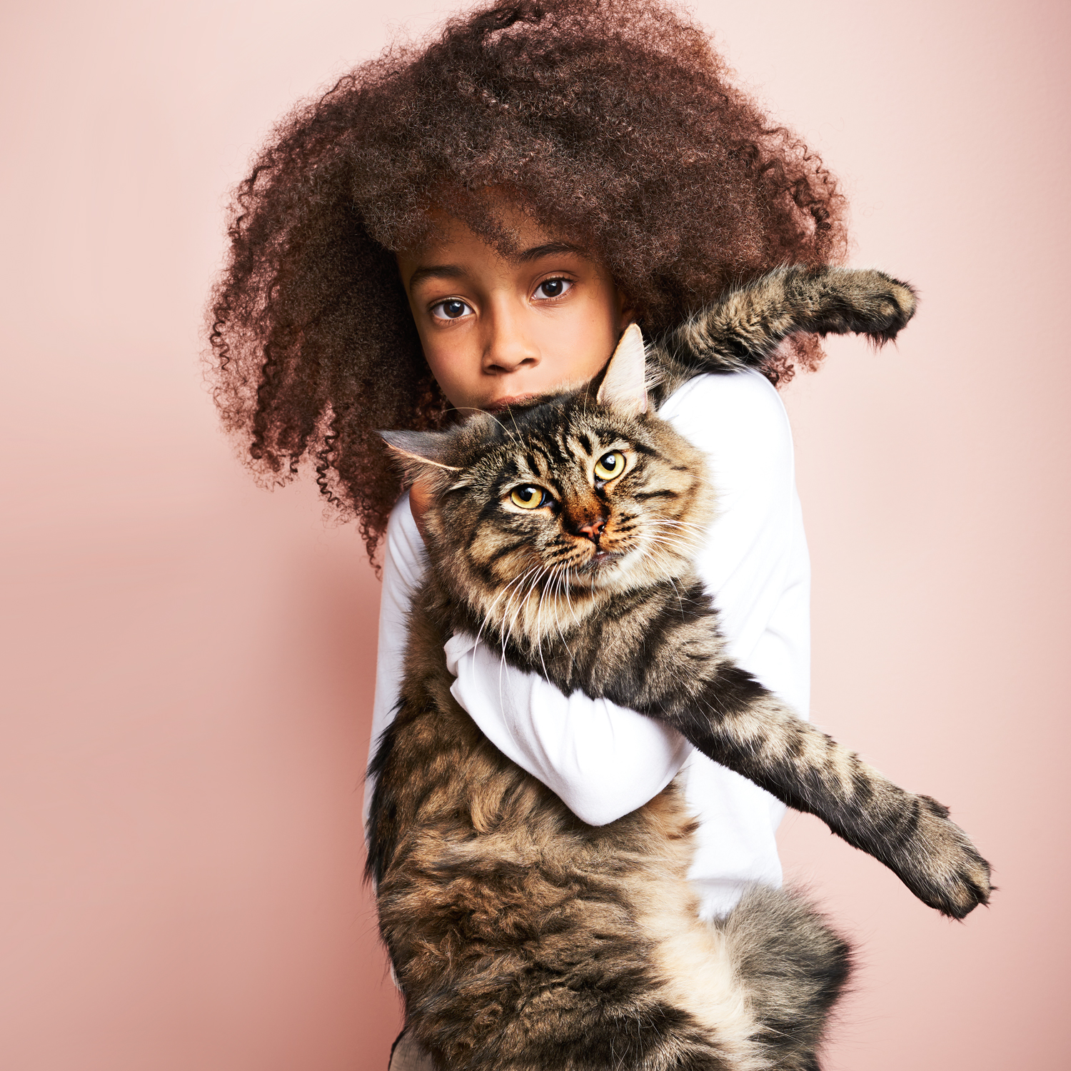 girl with curly hair holding her long-haired tabby cat