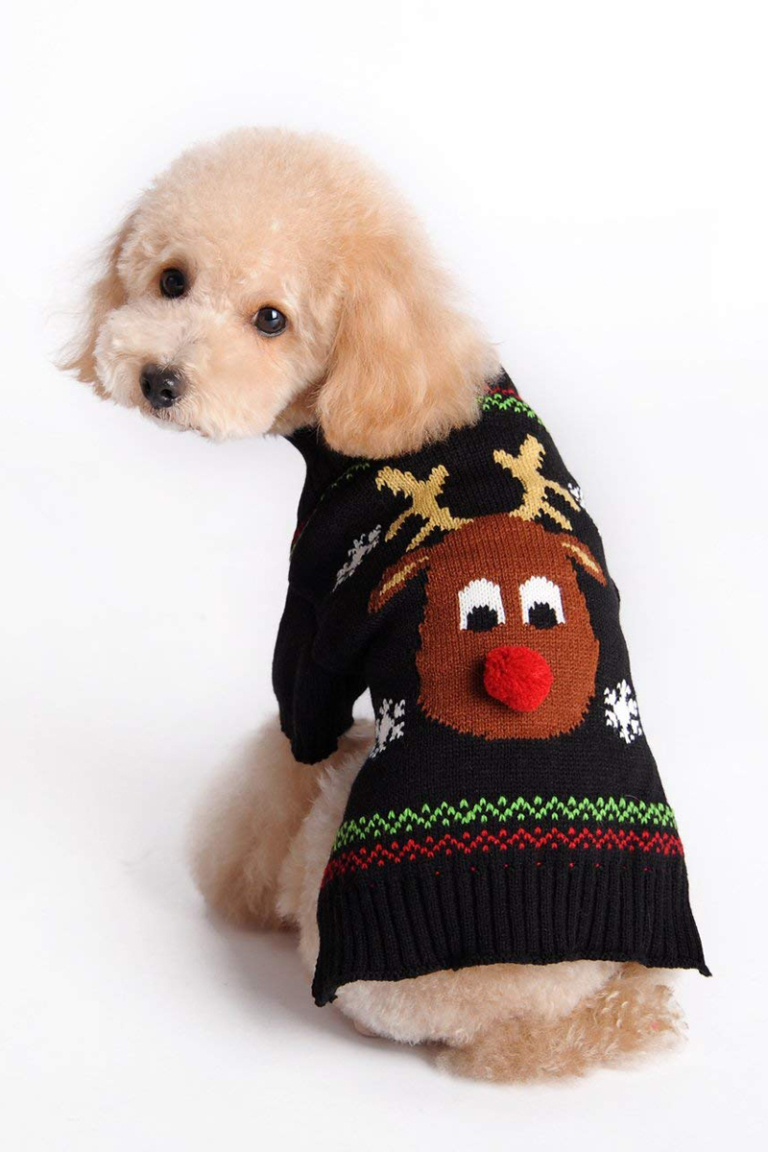 Pets Ugly Christmas Sweater 7