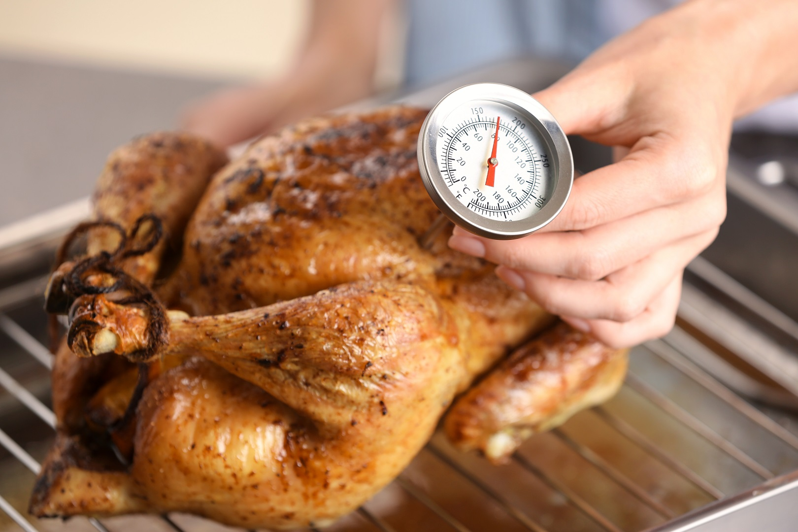 Roasted Turkey With Food Thermometer Check Temperature