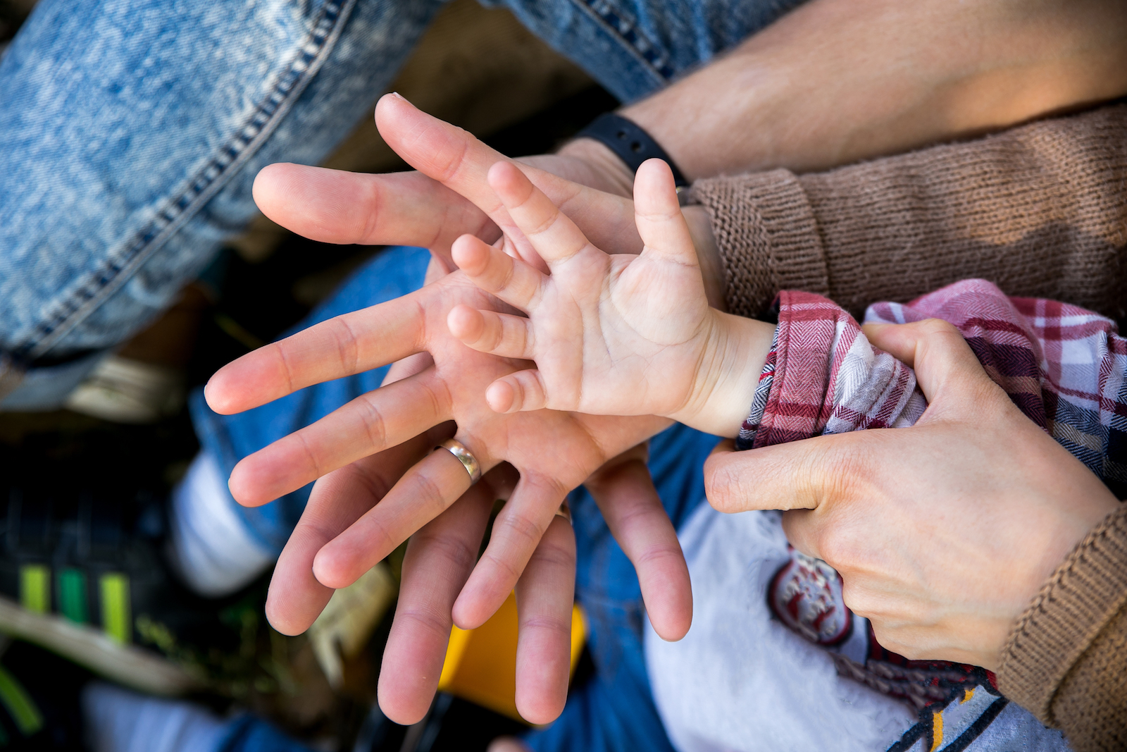 parents and child hands