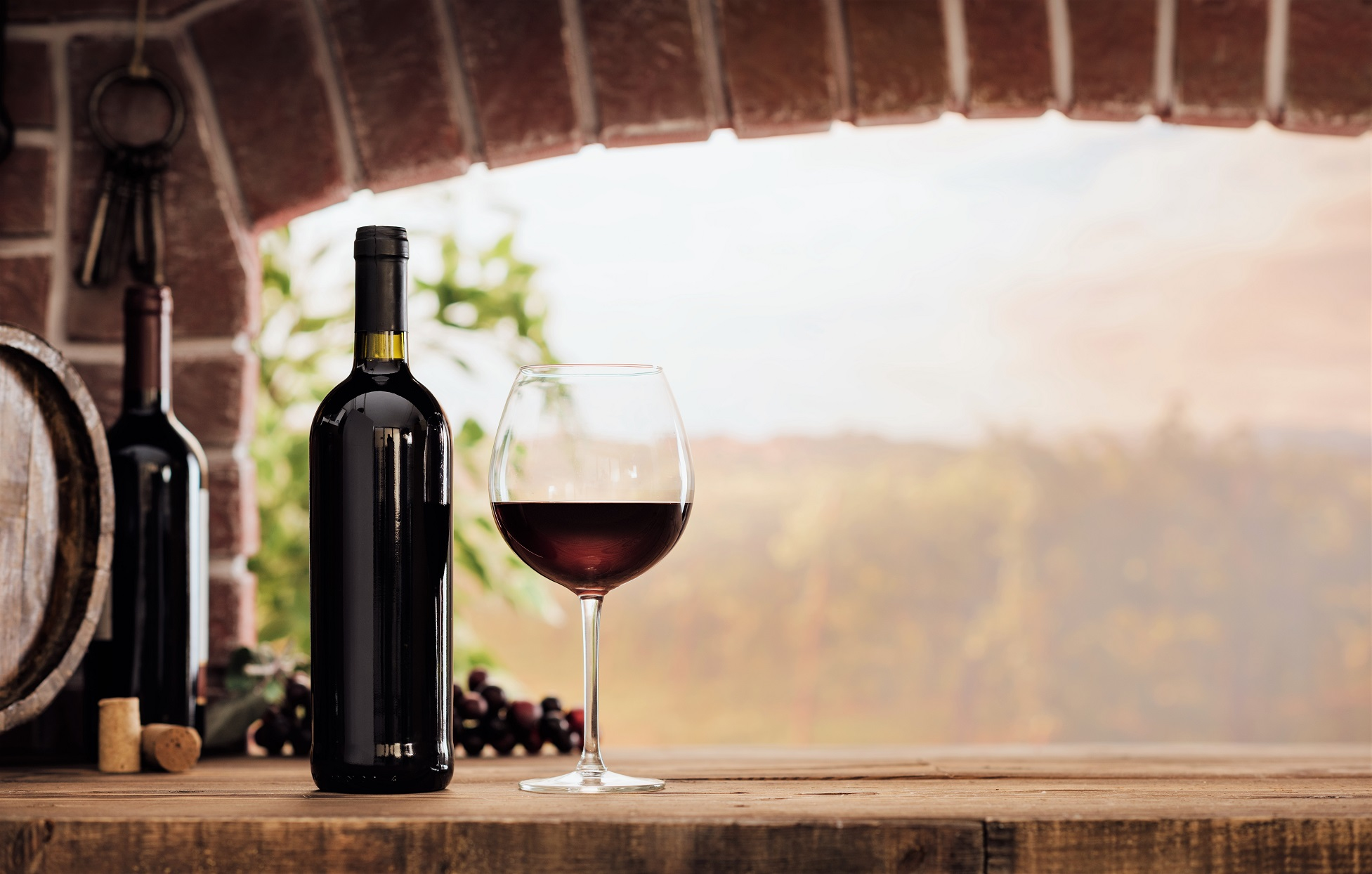 Bottle of Wine and Glass of Red Wine on Bricks