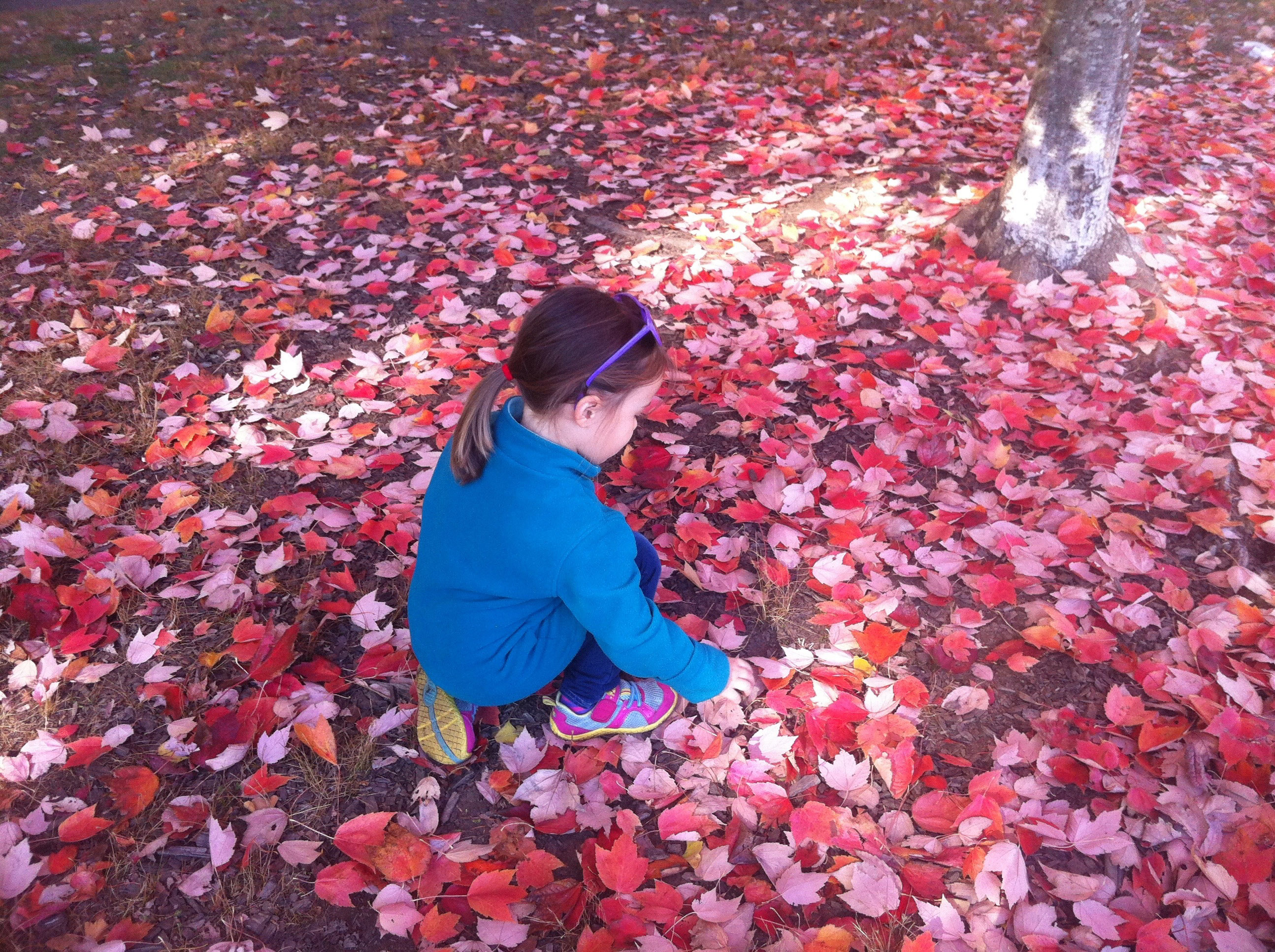 Jessica's daughter playing in leaves
