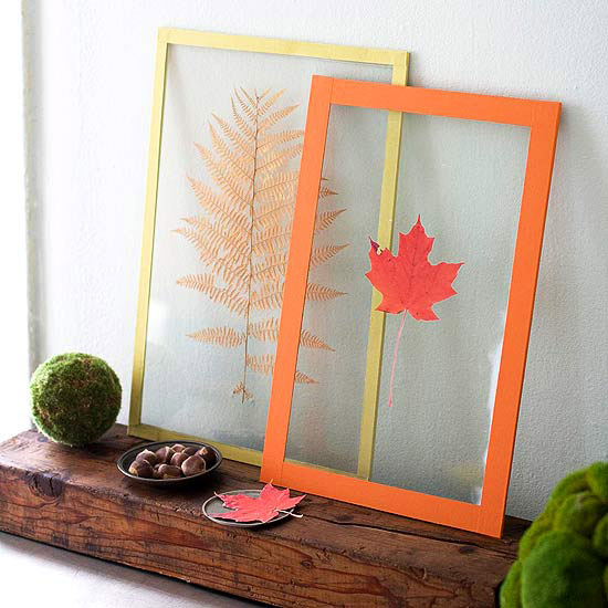 Framed Leaves