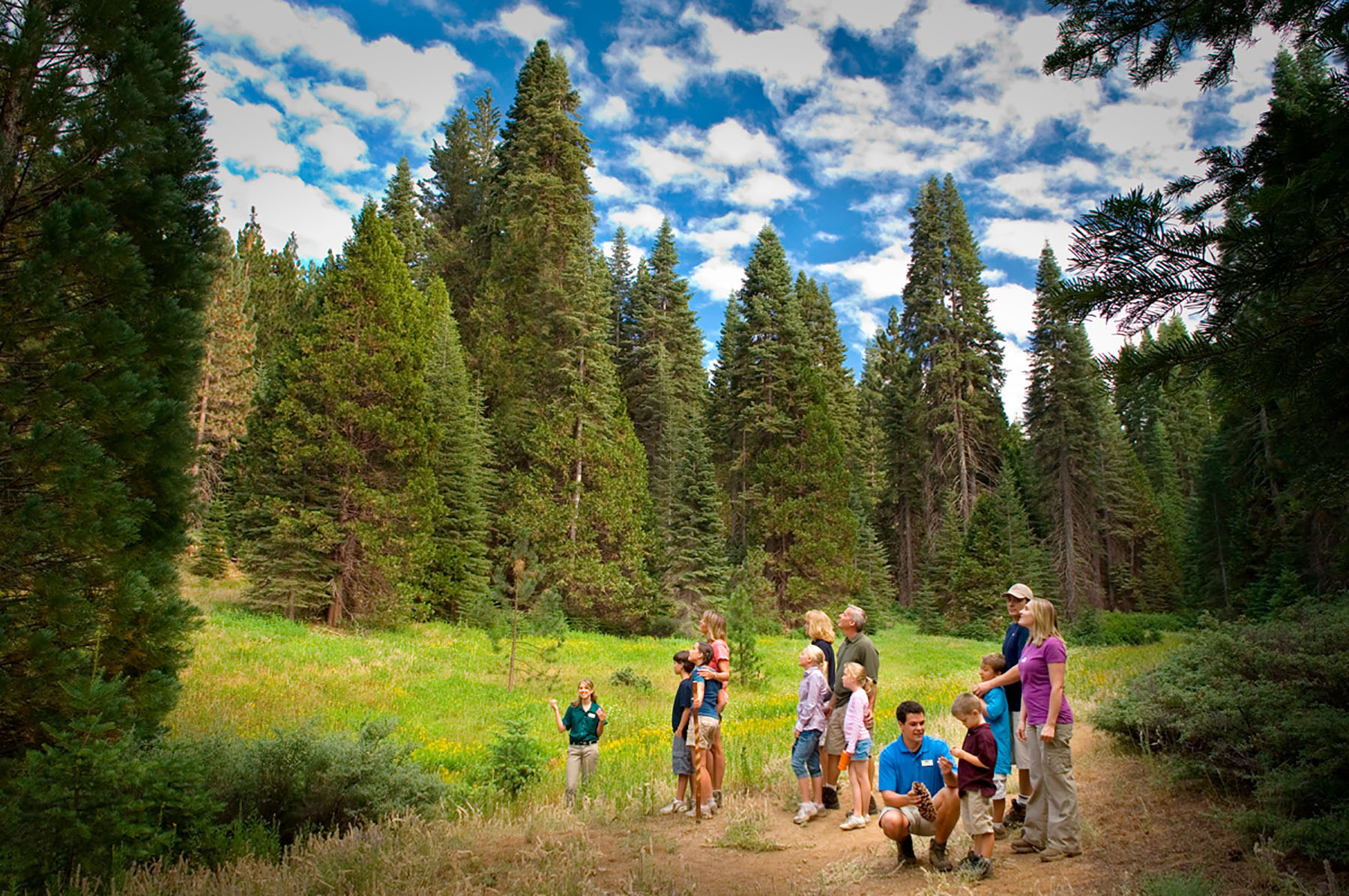 kids on guided hike at Sierra National Forest