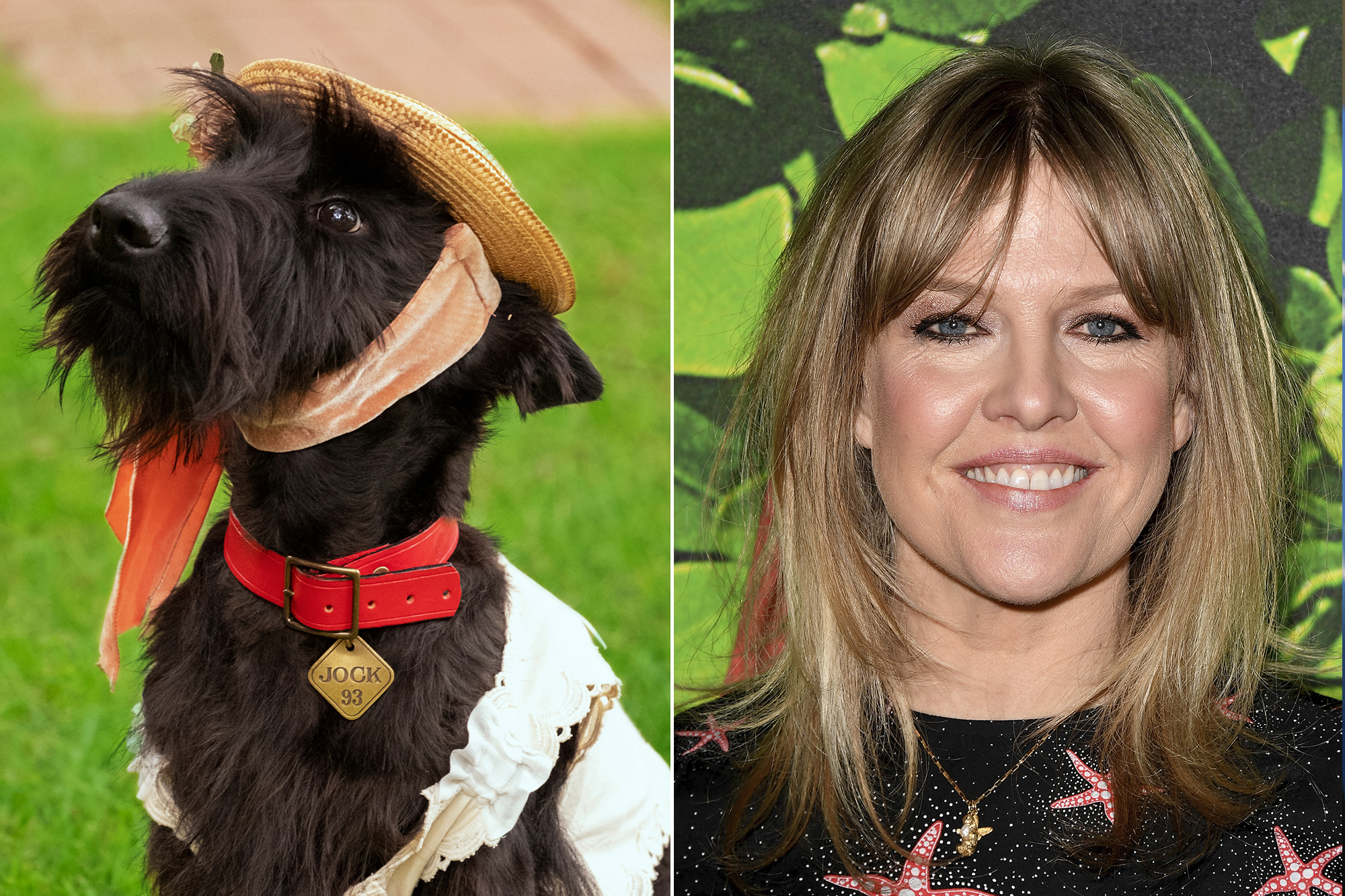 Live Action Lady and the Tramp Movie Ashley Jensen as Jock