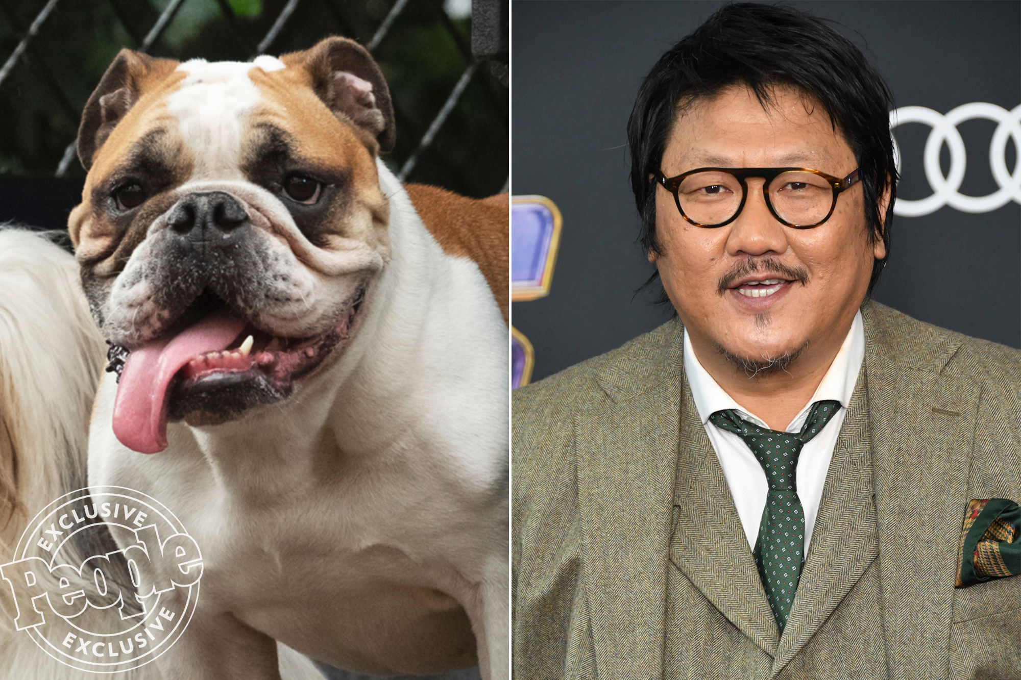 Live Action Lady and the Tramp Movie Benedict Wong as Bull