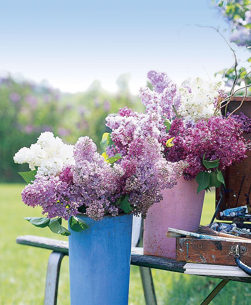 Longer-lasting bouquets