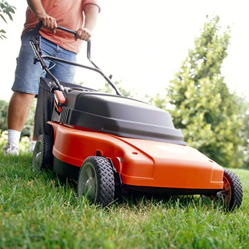 Grow more, mow less