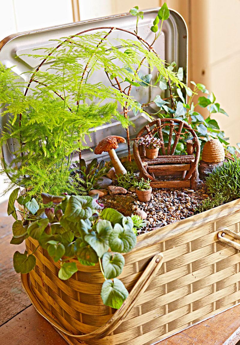 Big interest in little gardens