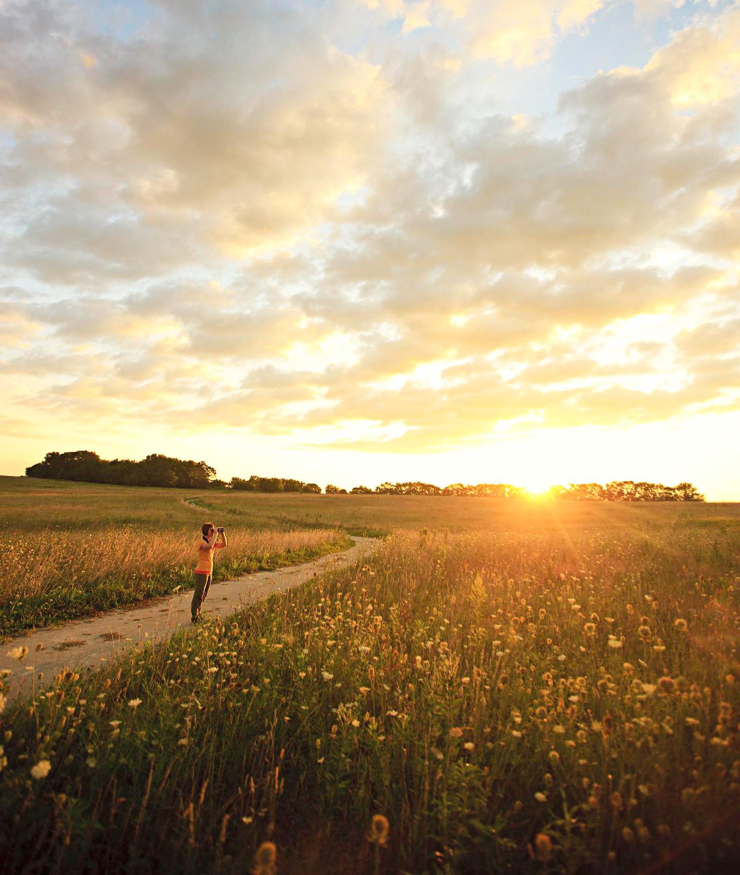 Midewin National Tallgrass Prairie: 60 miles southwest of Chicago