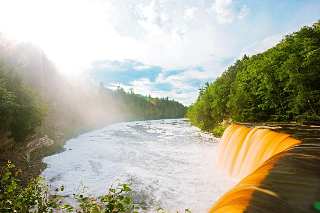 Tannins turn Tahquamenon Falls a rich brown color.