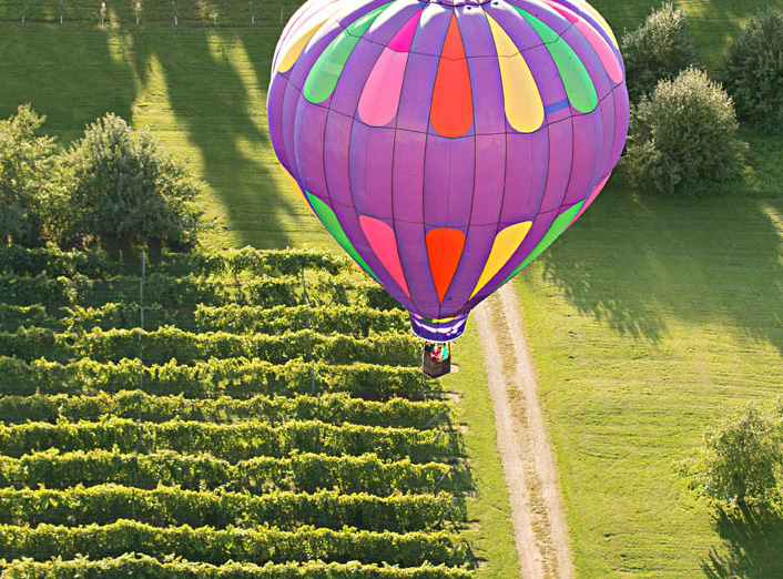 Aamodt's Hot Air Balloon Rides
