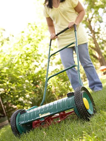 Mow lawns often