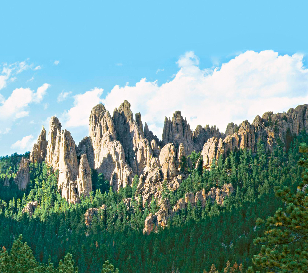 Things to Do in South Dakota's Black Hills and Badlands--Custer State Park