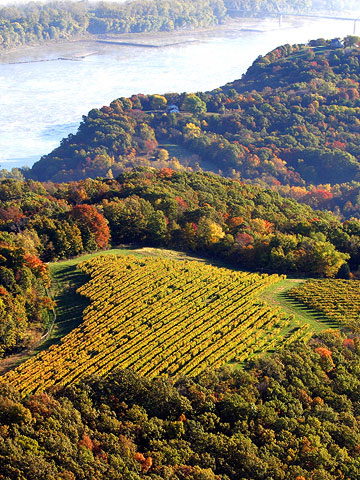 Missouri: wine trails