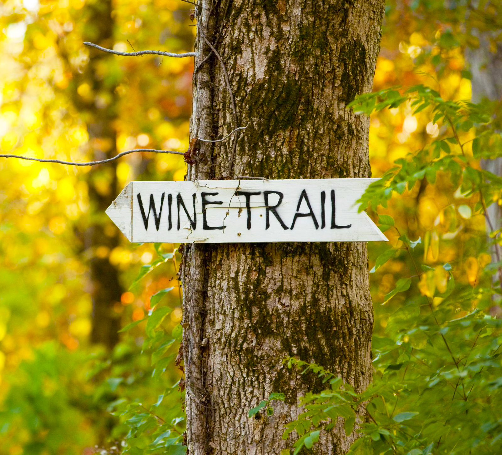Illinois: Shawnee Hills Wine Trail