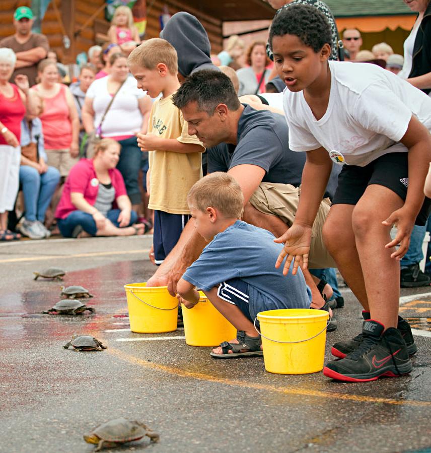 Nisswa turtle races