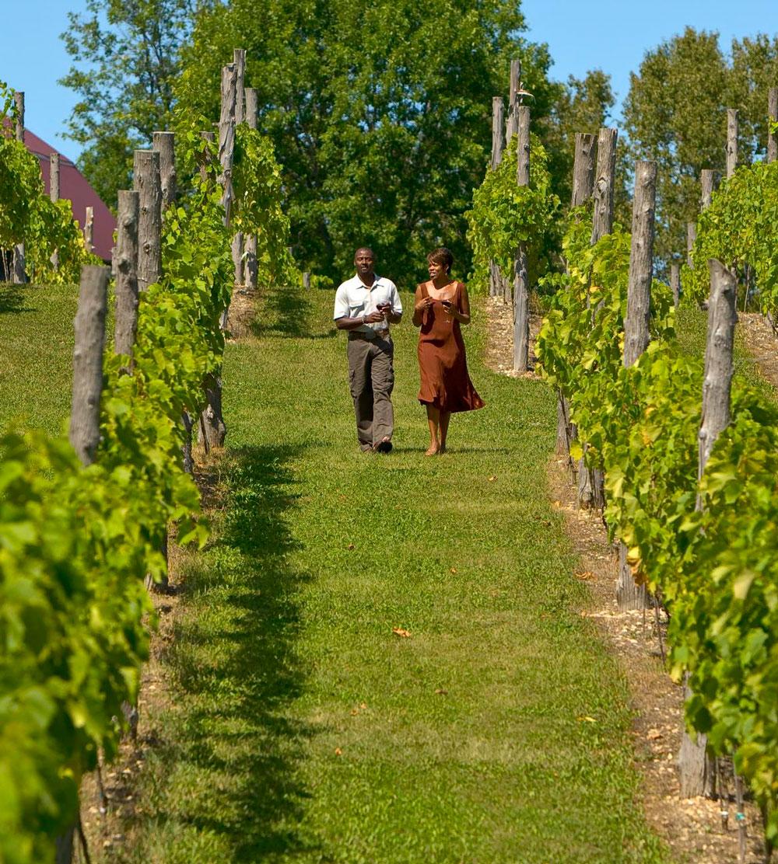 Things to Do in Door County--Wineries