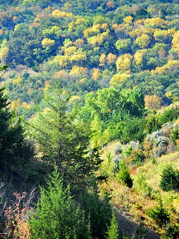 Oyate Trail