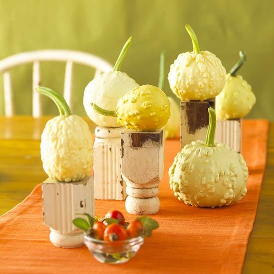 Gourd beauty