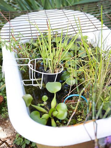 Tub garden