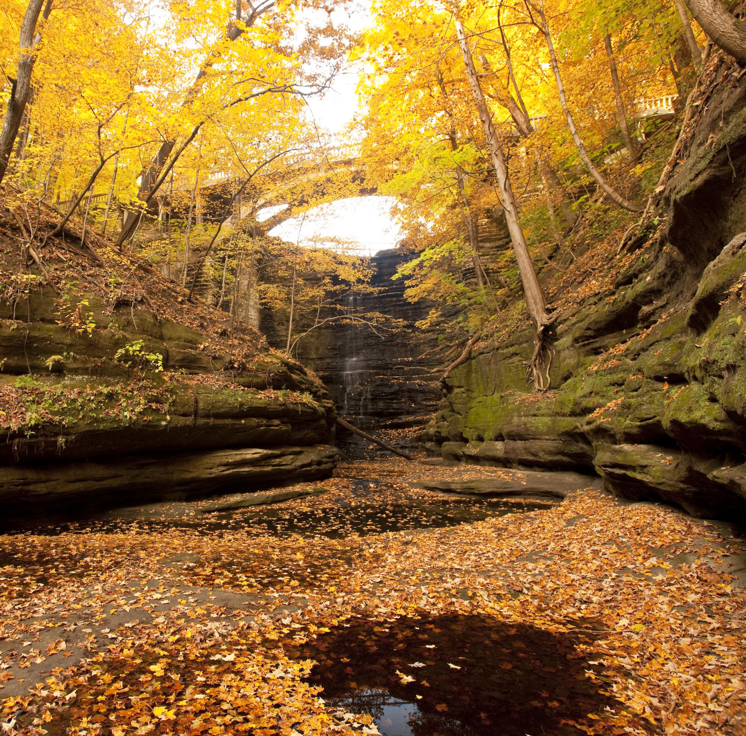 Illinois: Illinois River Road National Scenic Byway