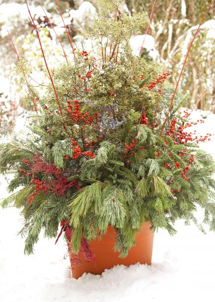 Red-and-green pot