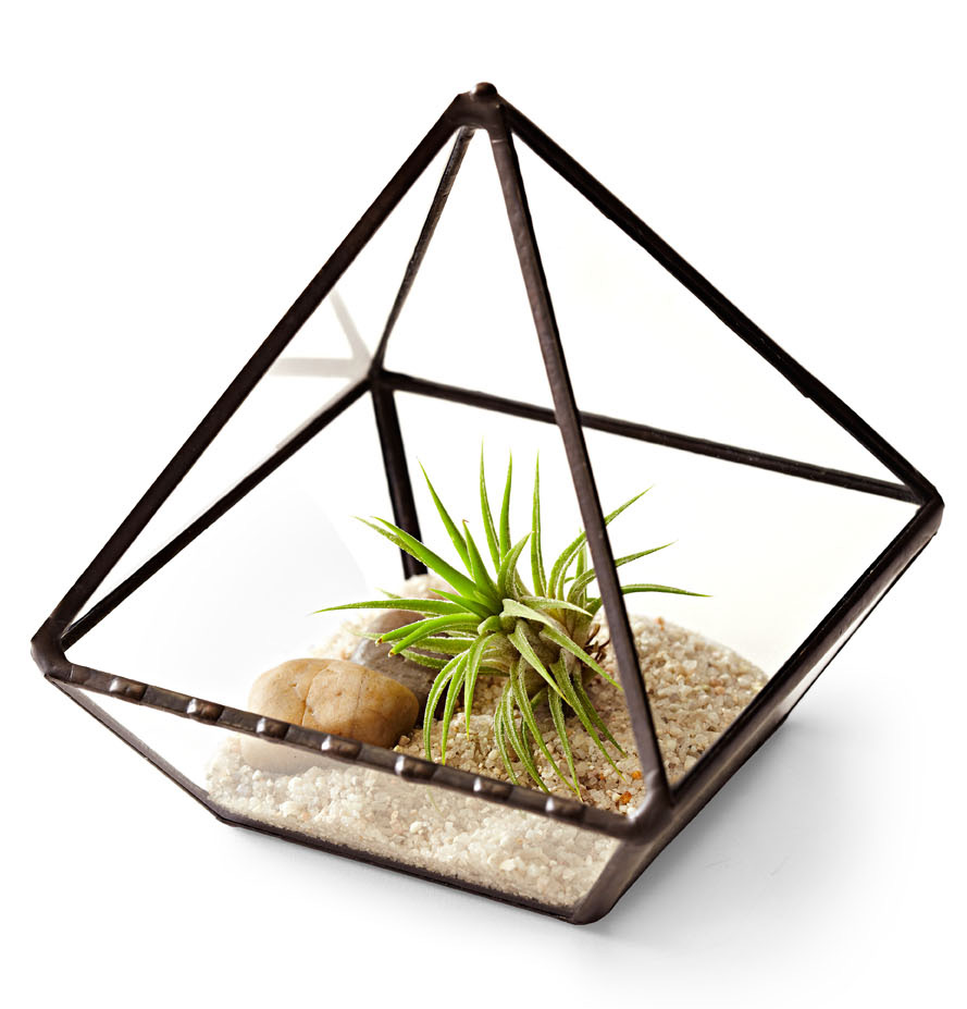 Jechory Glass Designs planter