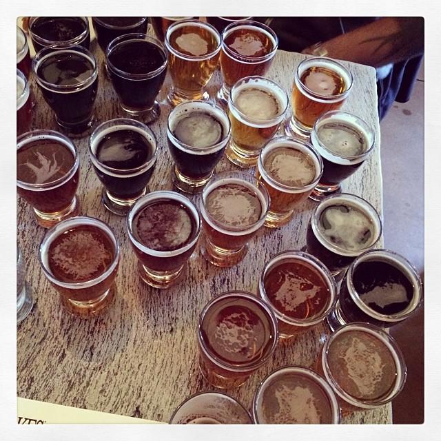 Brewing40beeannie.jpg