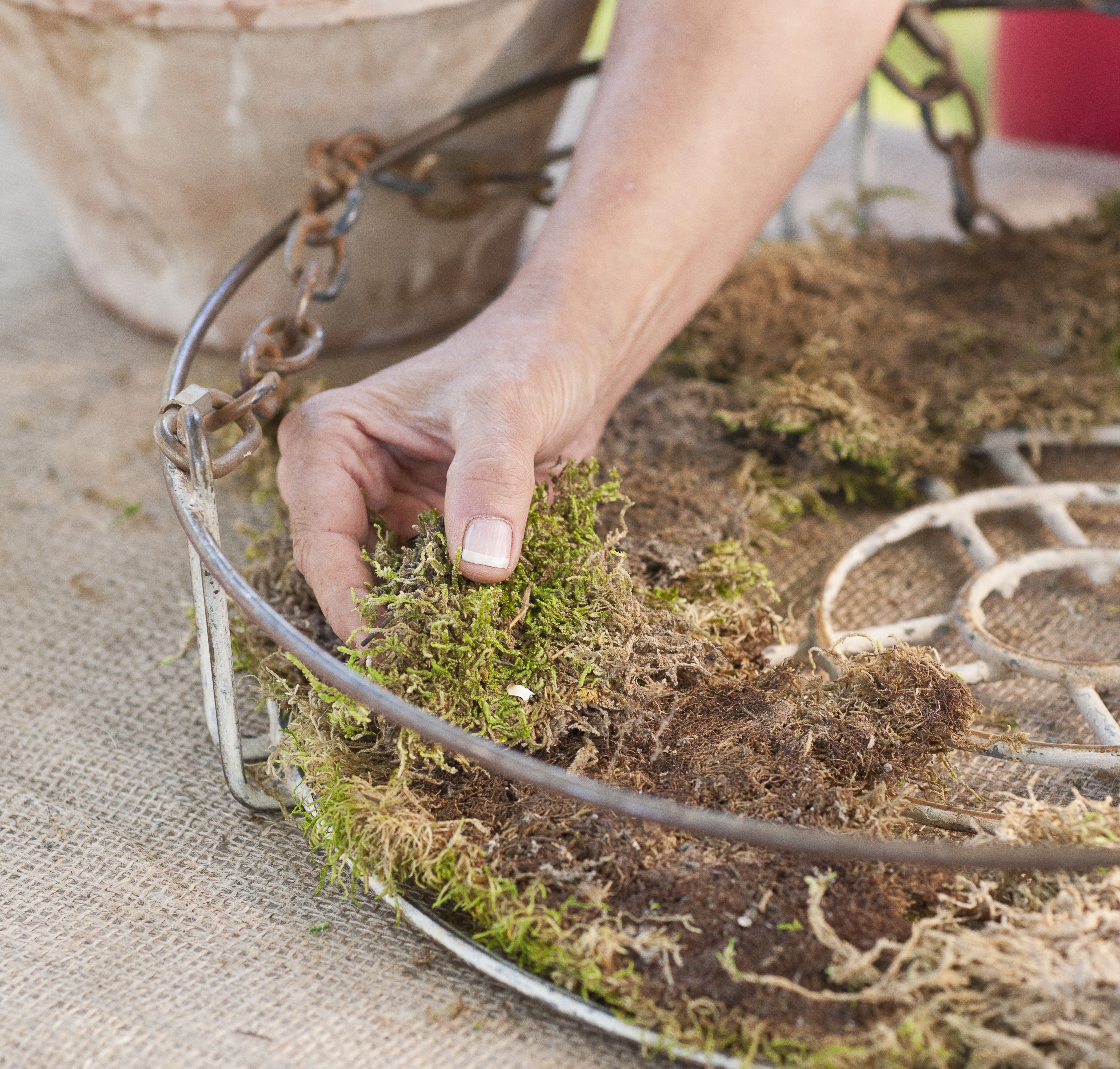 Step 5: Line basket with moss