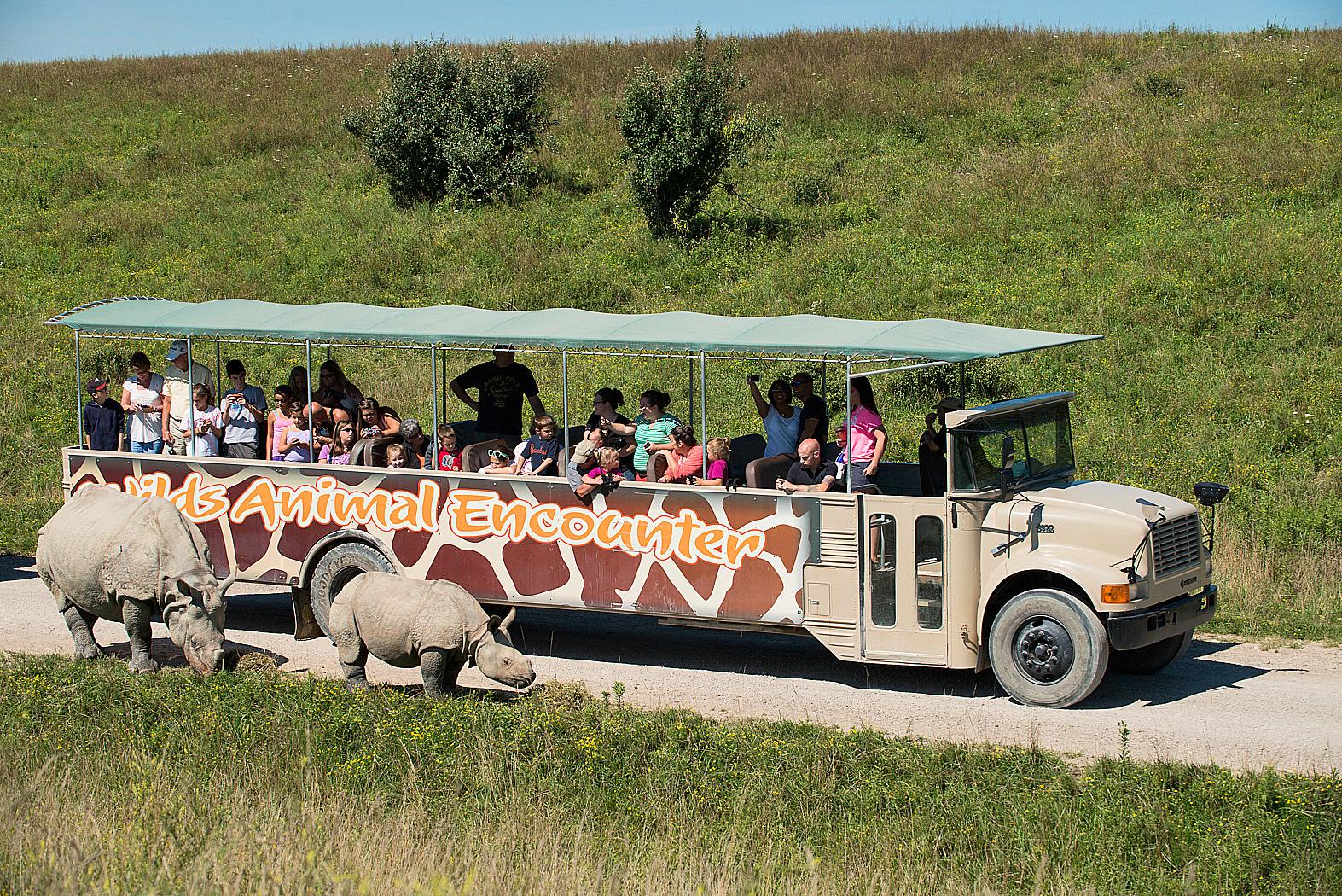 Open-Air Safari Tour at The Wilds