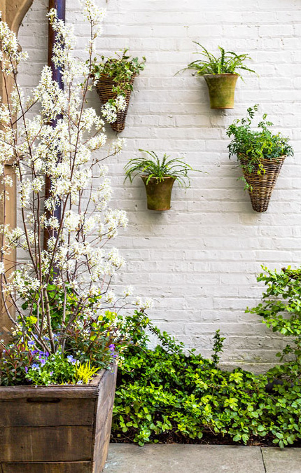 Vertical gardens: Against the wall