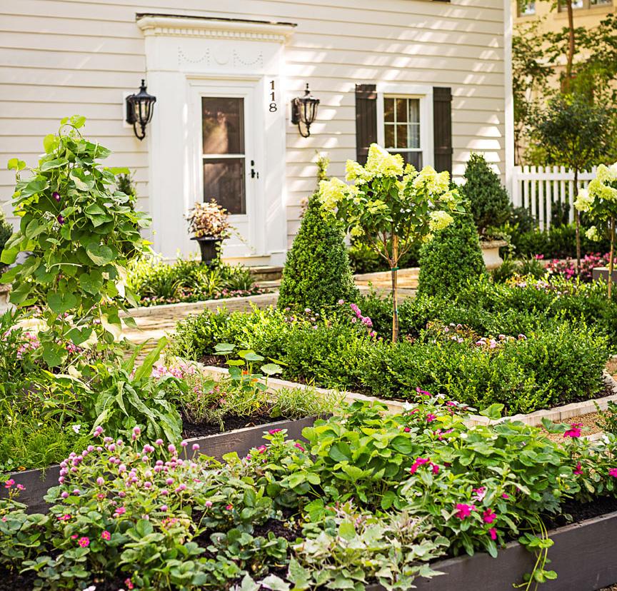 Front-yard garden