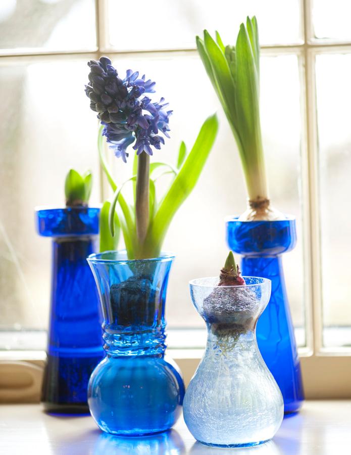 Forcing Vases