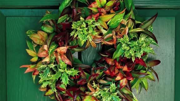 How To: Make an Any-Season Wreath