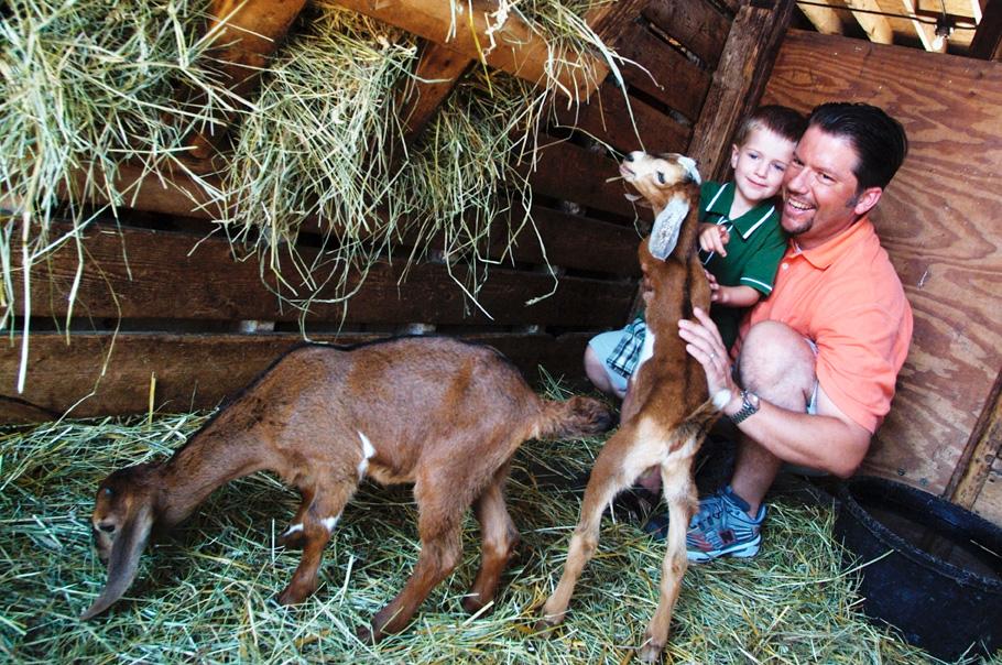 Lambs Farm. Photo courtesy of IOT.