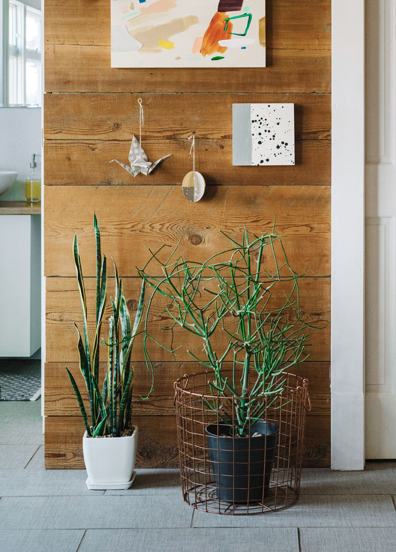Plants mingle with subtle holiday touches