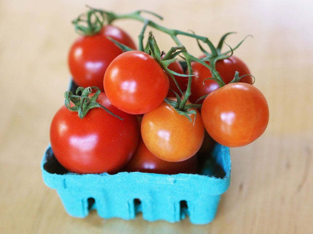 growing-tasty-tomatoes-basket