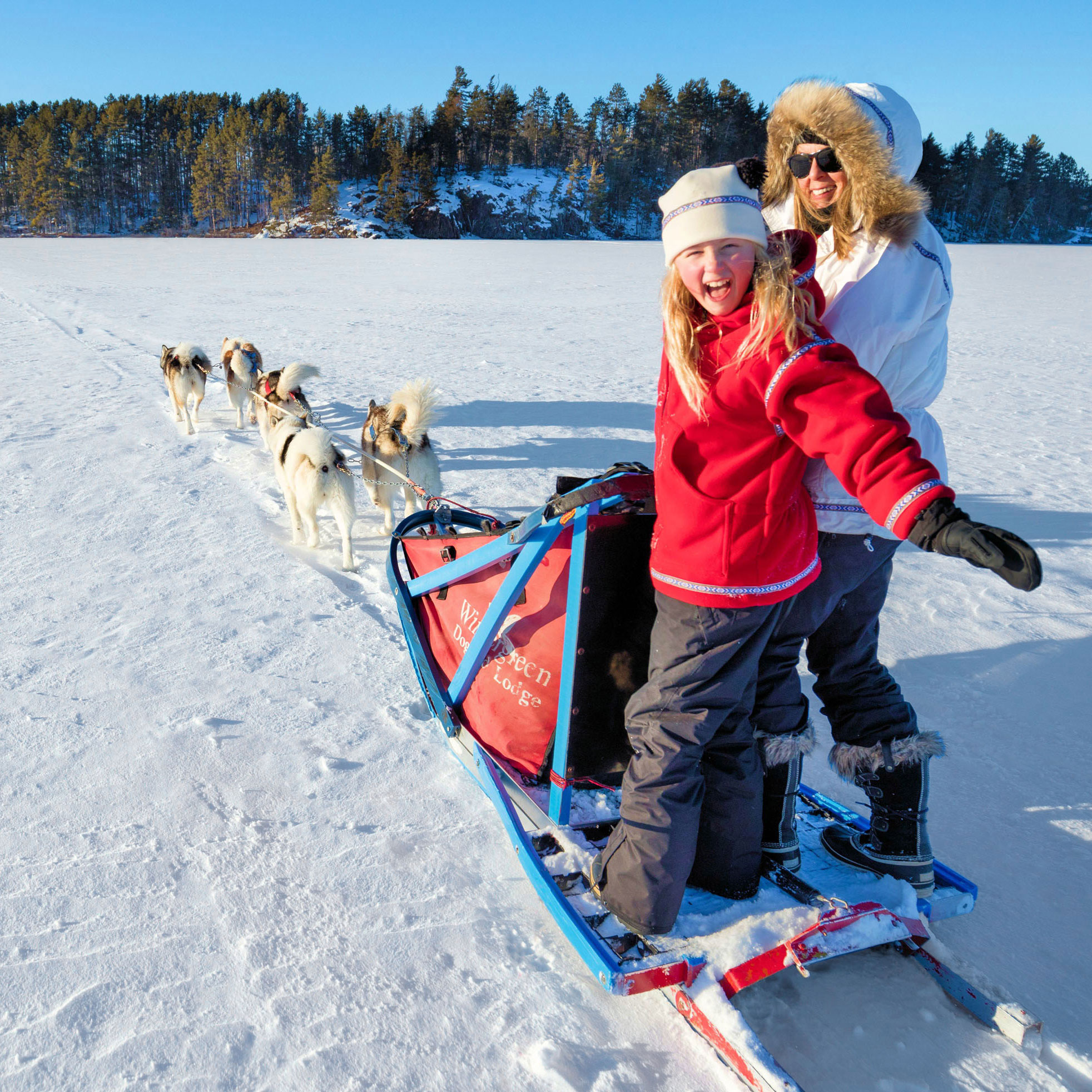 Dog sledding at Wintergreen Dogsled Lodge