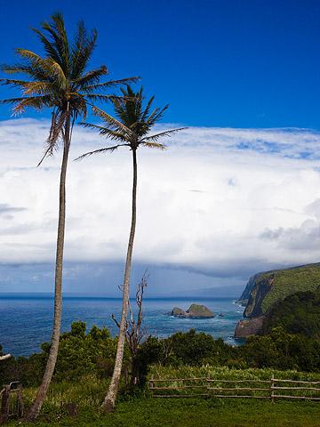 BigIsland_Kohala_Hawaii.jpg