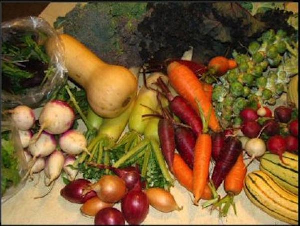 farm-share2.jpg