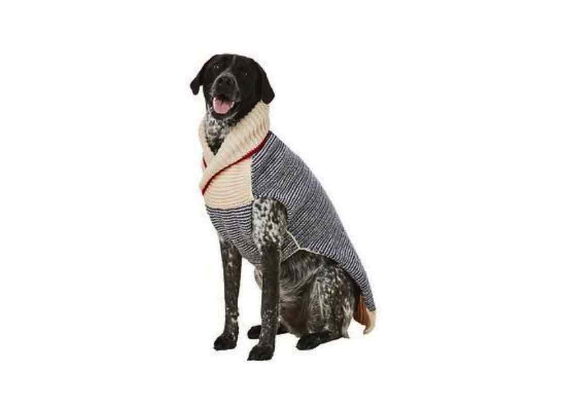 Chilly Dog Spencer Dog & Cat Sweater