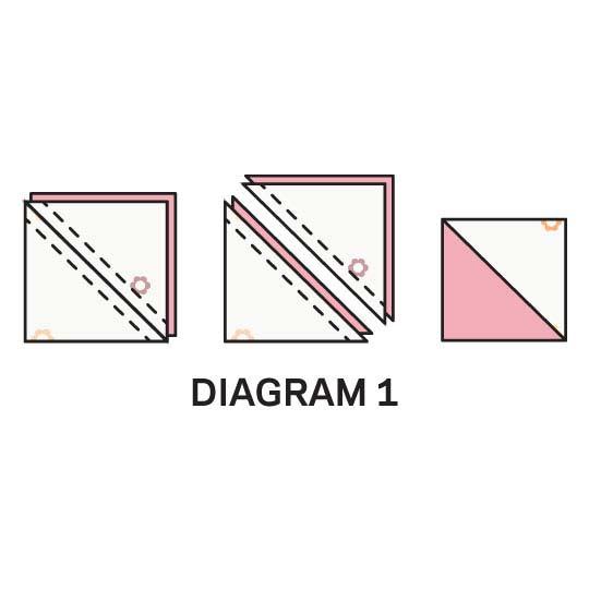 img_eight-pointedlg_3.jpg