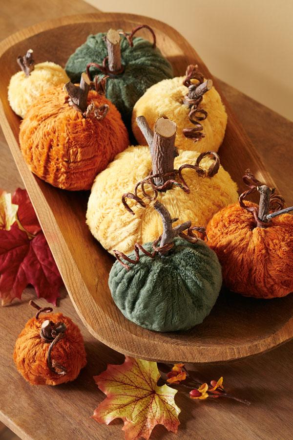 Posh Pumpkins
